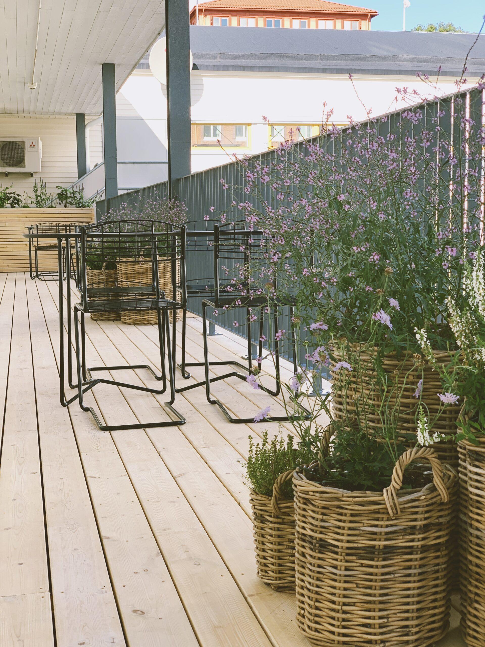 Möbler och växter altan